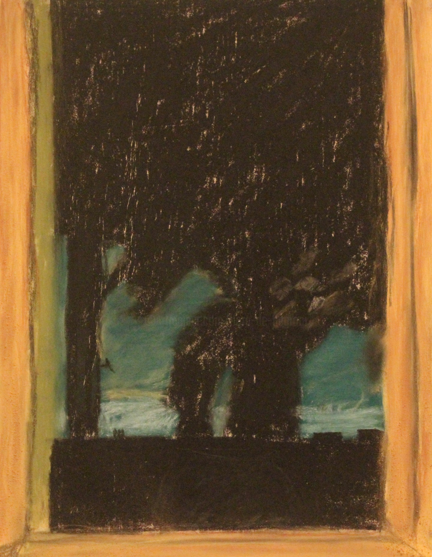 Anne Flora de Negroni - Fenêtre sur la nuit