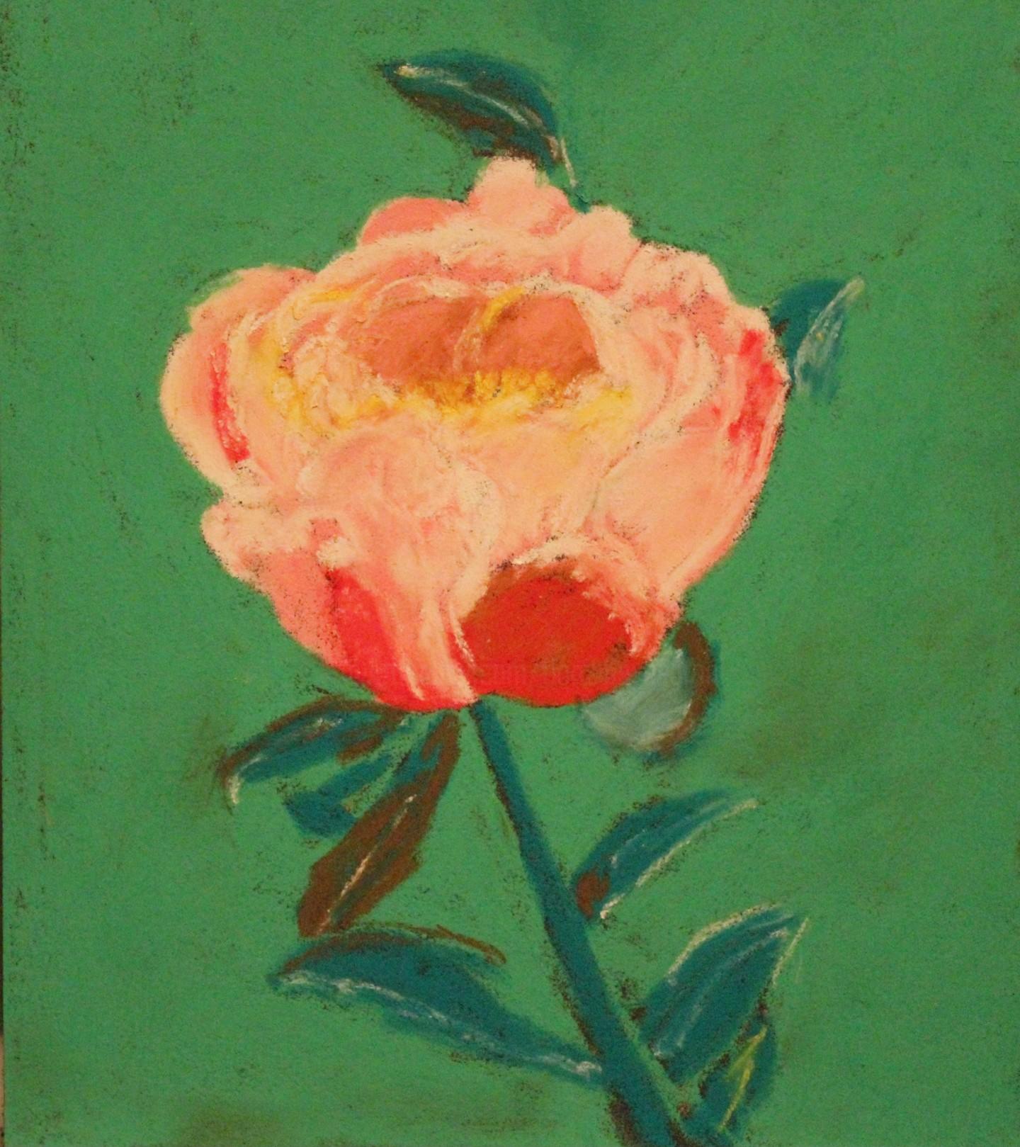Anne Flora De Negroni - Pivoine