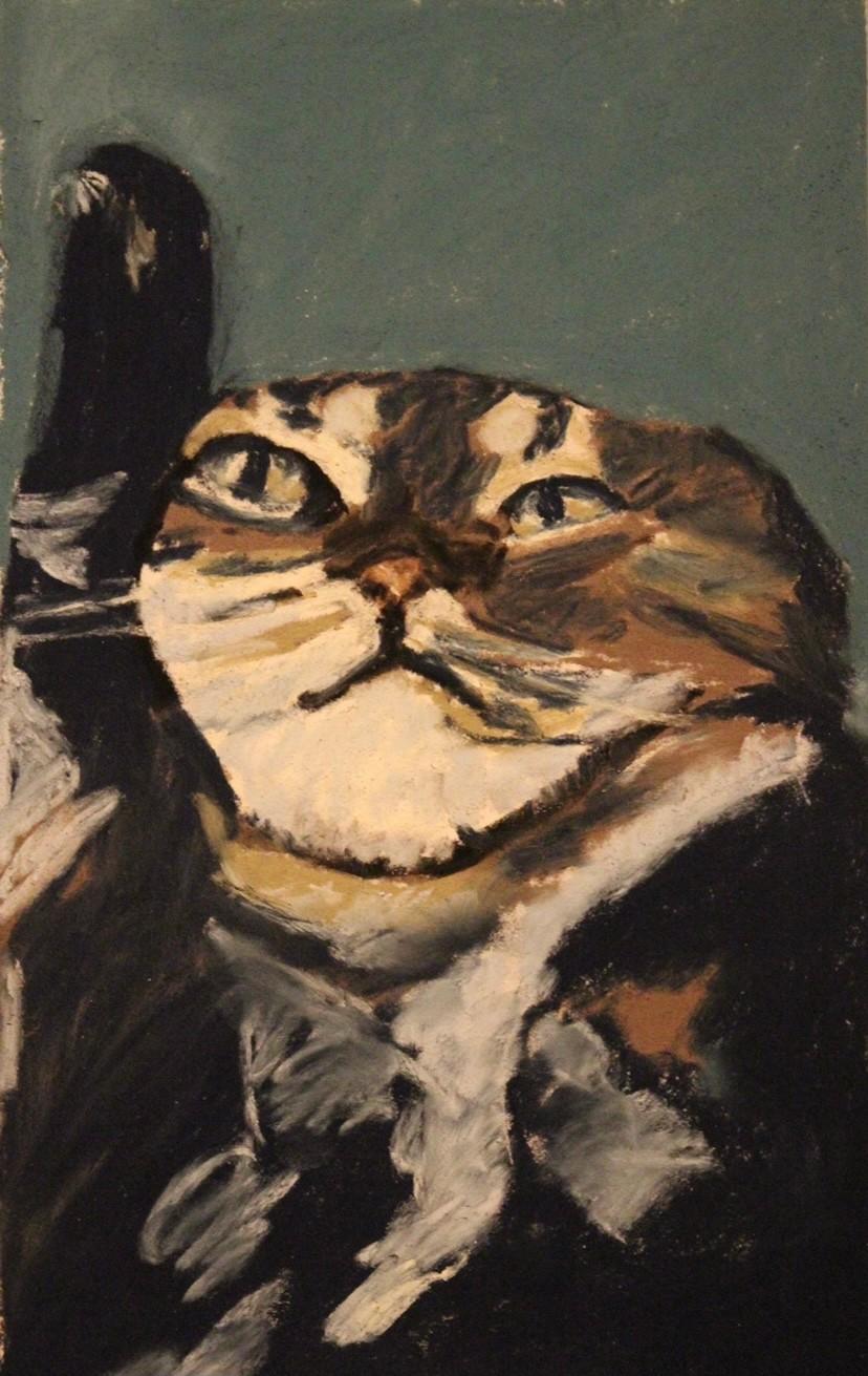 Anne Flora De Negroni - Le chat beauté